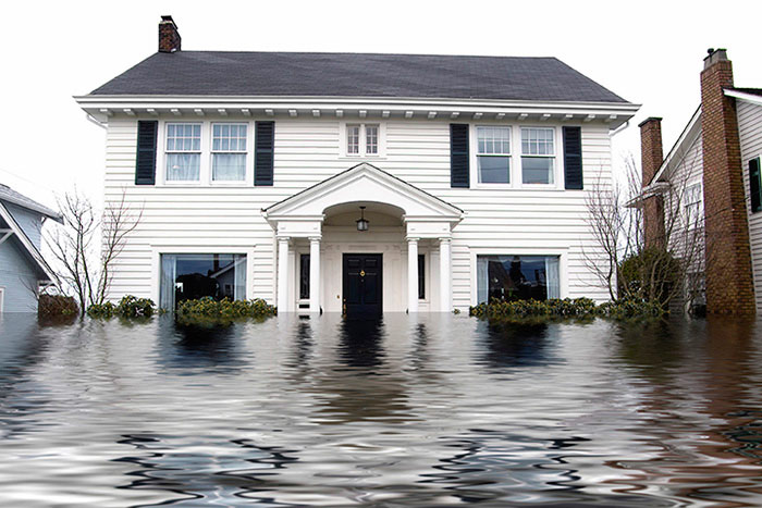 Chem-Dry of Central Illinois  Provides Water Damage Restoration Services to Bloomington, IL